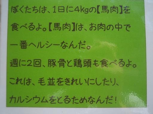 IMG_7169 - コピー