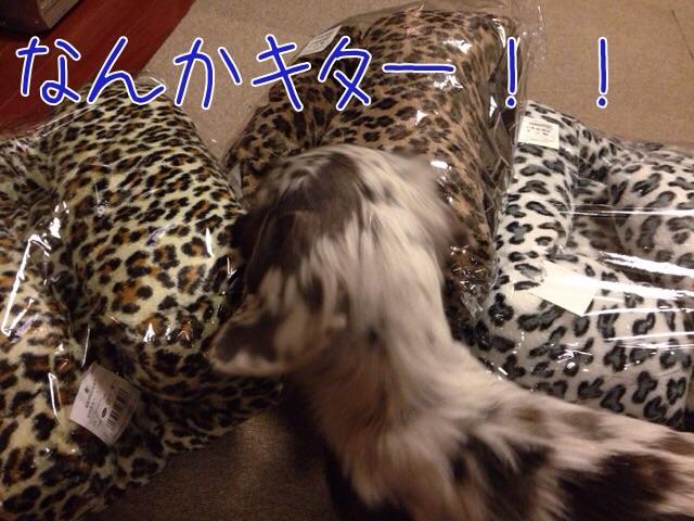 2014120709560401c.jpg