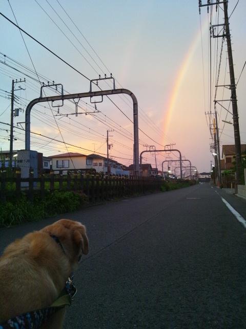 2012 8 14 rainbow 4