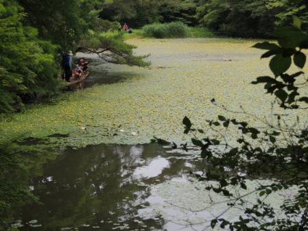 N0358長谷池