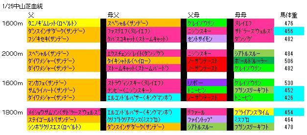 1/25中山芝血統