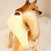 中型犬用ルーパー付き術後バッククロスパンツ(女の子用)