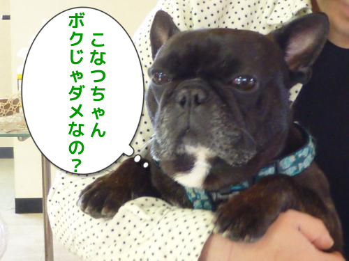 20130110-a.png