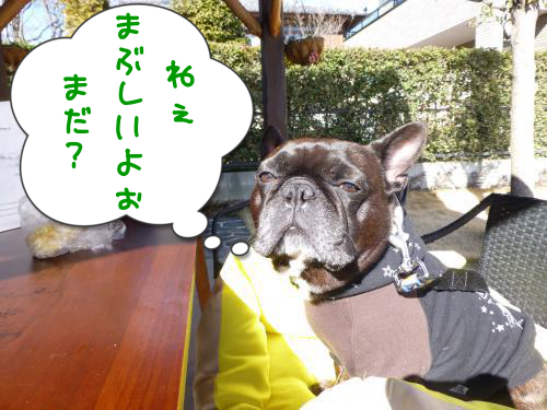 20130125-5.png