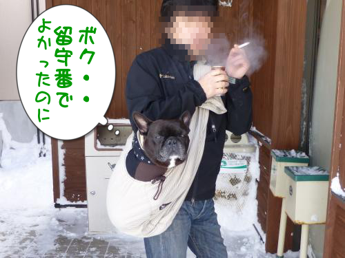 20130212-2.png