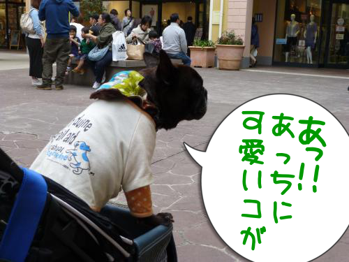 20130420-9.png