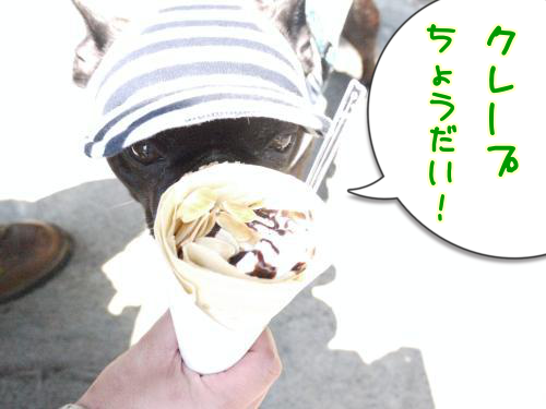 20130504-f.png