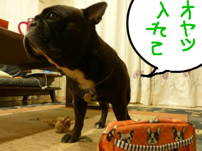 snap_myfrenchbulldog_2012102213256.jpg