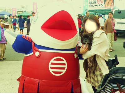 snap_myfrenchbulldog_2012111185119.jpg
