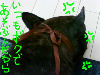 snap_myfrenchbulldog_201270214245.jpg