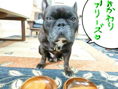 snap_myfrenchbulldog_20128517242.jpg
