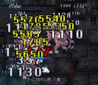 12171.jpg