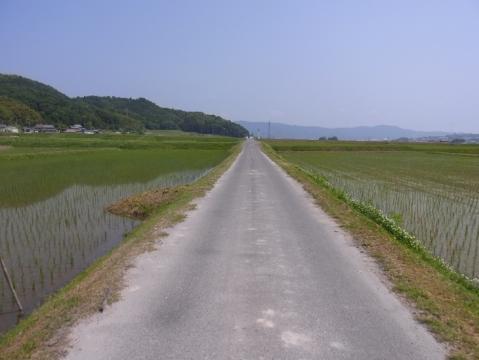 20120527天ダム御斎峠信楽0381
