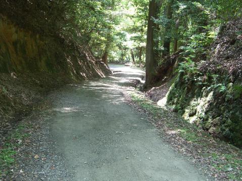 20120812若草山2541