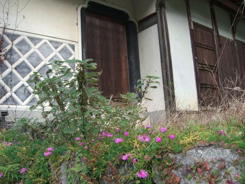 20121103明日香ポタ2666