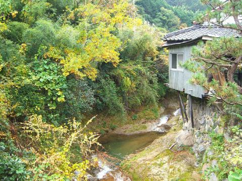 20121103明日香ポタ2658