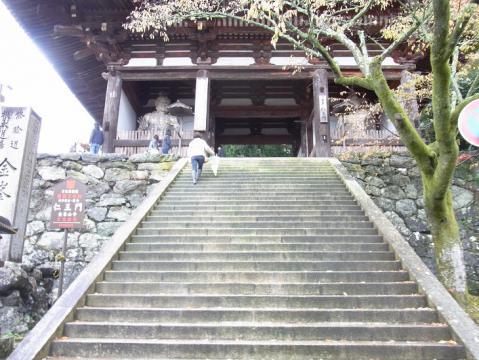 20121111吉野山0821