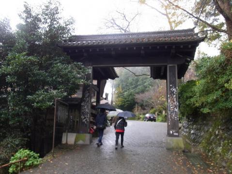 20121111吉野山0818