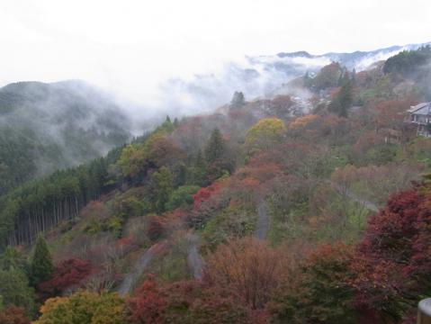 20121111吉野山0817