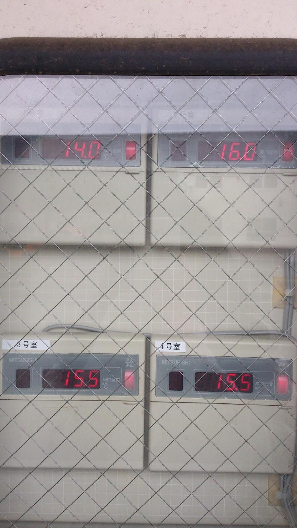 温度(倉庫)