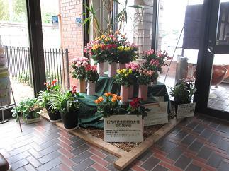 花の展示会