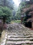 日吉・金大巌への山道08