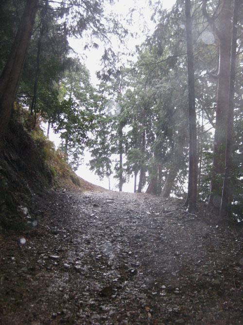 日吉・金大巌への山道12