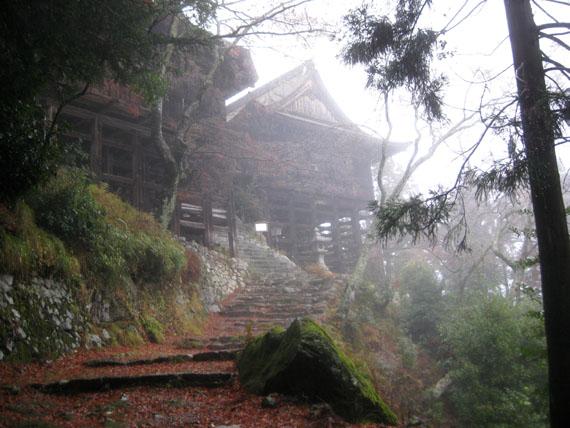 日吉・金大巌への山道20