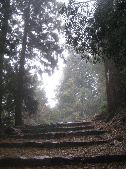 日吉・金大巌への山道18