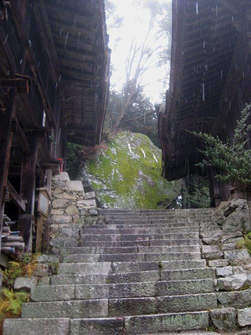 日吉・金大巌への山道25