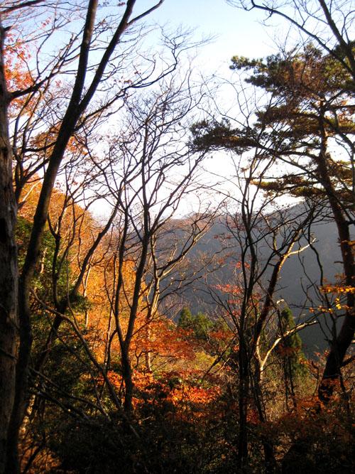 秋の山02