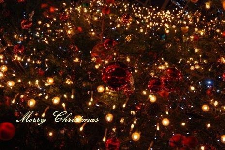 cristmas18-23.jpg