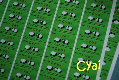 cyai17-3.jpg