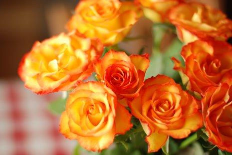 flower17-8.jpg