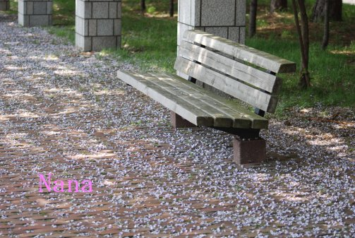 fuji16-12.jpg