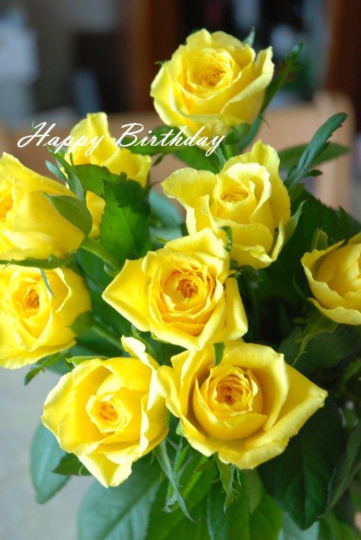 rose17-1.jpg