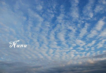 sky17-27.jpg