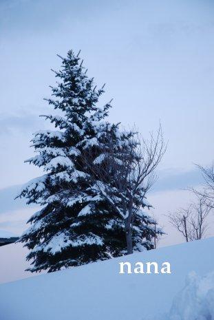 winter18-3.jpg