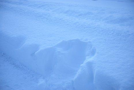winter18-4.jpg