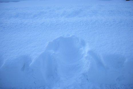 winter18-5.jpg
