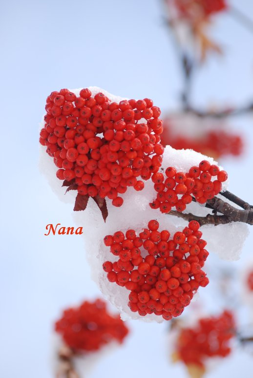 winter21-1.jpg