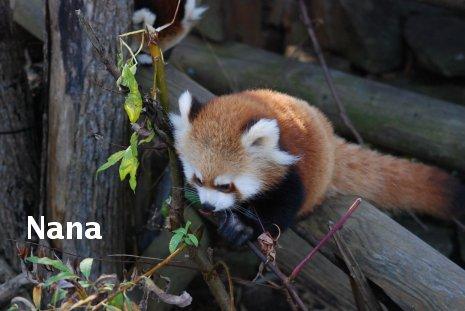 zoo17-31.jpg