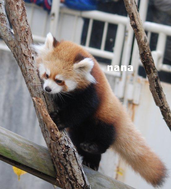 zoo18-13.jpg
