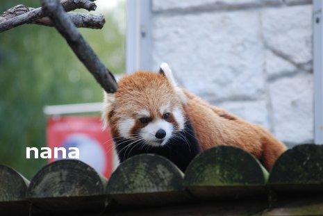 zoo18-2.jpg