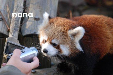 zoo18-27.jpg