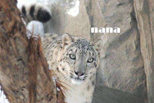 zoo18-72.jpg