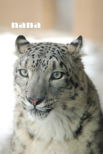 zoo18-73.jpg