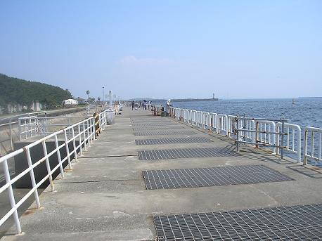 南港魚釣り公園