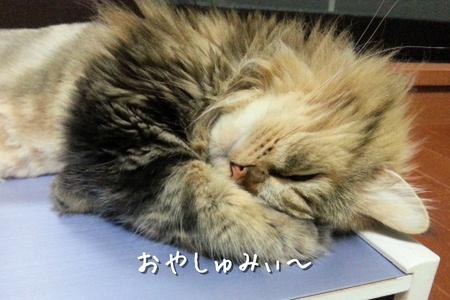 おやしゅみ