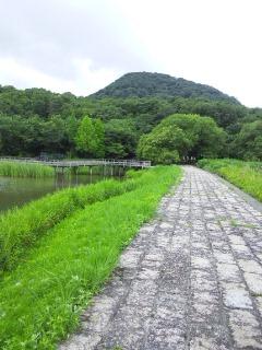 なかよし池から甲山